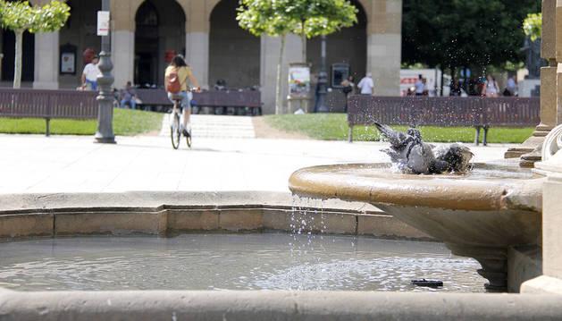 ALTAS TEMPERATURAS (Fuente Plaza del Castillo,Plaza del Castillo, Merindades, Parque la Media Luna)