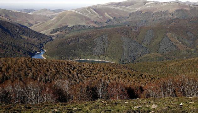 Vista de los montes de la Selva de Irati.