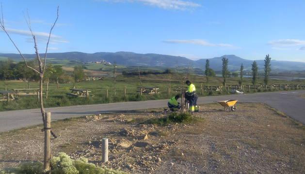 La brigada ha comenzado la semana con el acondicionamiento del aparcamiento del embalse de Alloz.