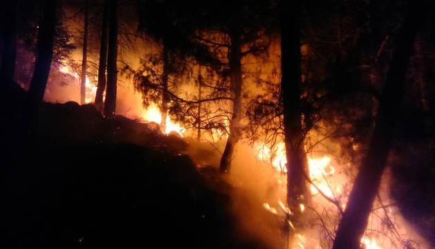Incendio de vegetación en Belascoain en abril.