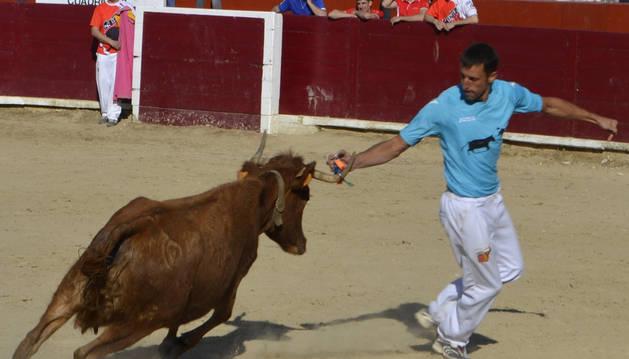 El recortador de Estella Óscar de Luis, colocando la primera anilla.