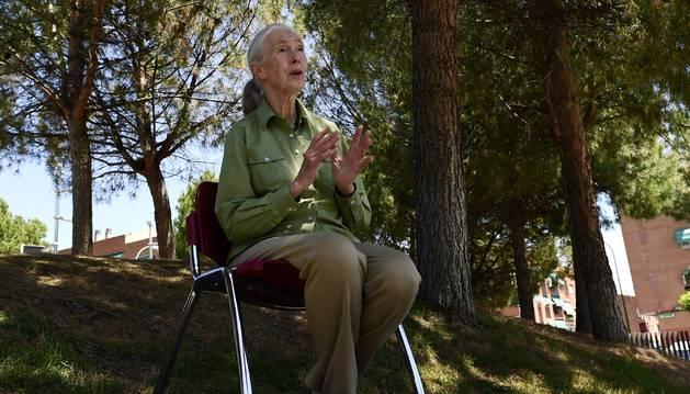 Goodall pretender unir el ecologismo y el bienestar humano