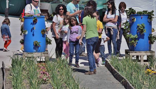 Niños y adultos pudieron participar en una plantación solidaria.