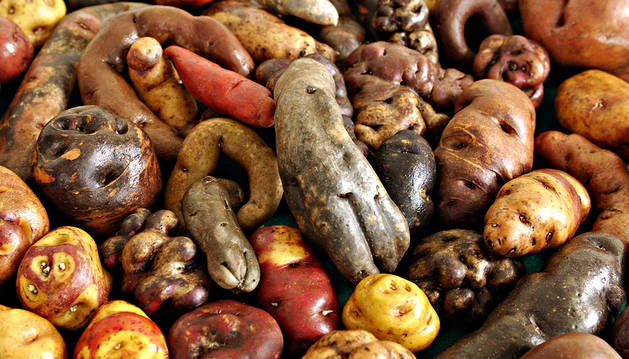 Variedades de patatas peruanas.