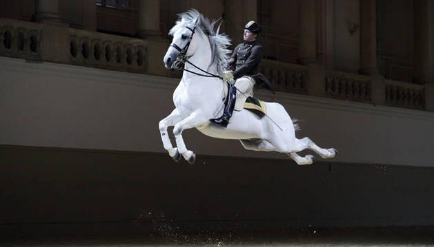 Un caballo y un jinete de la escuela ecuestre vienesa.