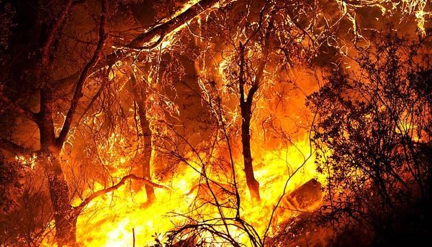 Imágenes del incendio en California