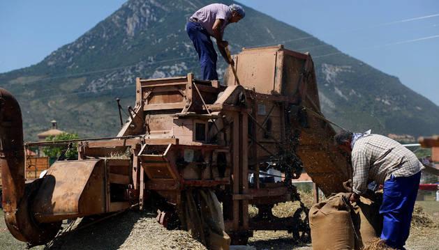 Separando el grano de la paja con la trilladora, con la Higa de Monreal al fondo.