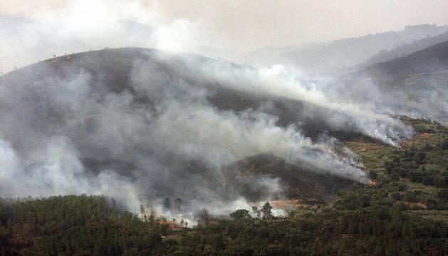 Uno de los frentes del incendio de la Sierra de Gata, en el término de Acebo (Cáceres).