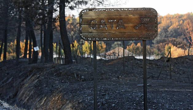 Carretera del Puerto Perales, que une las provincias de Salamanca y Cáceres, muy afectada por las llamas del incendio de la Sierra de Gata.