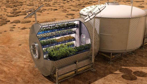Recreación informática que muestra el cultivo de plantas en el espacio.