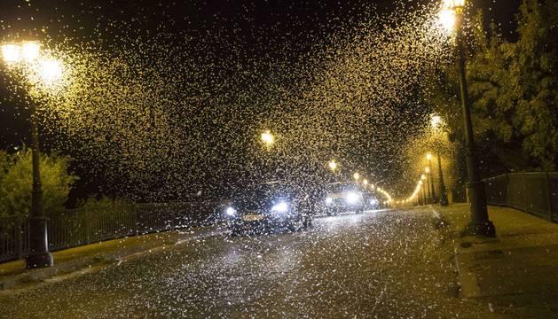 Varios coches circulan el pasado viernes por la noche por el puente del Ebro de Tudela ante una nube de mariposas efímeras.