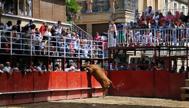 Momento en el que la vaca salta el vallado.