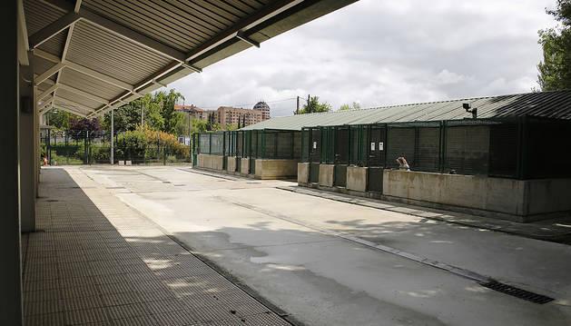 El Ayuntamiento ampliará el centro de atención de animales