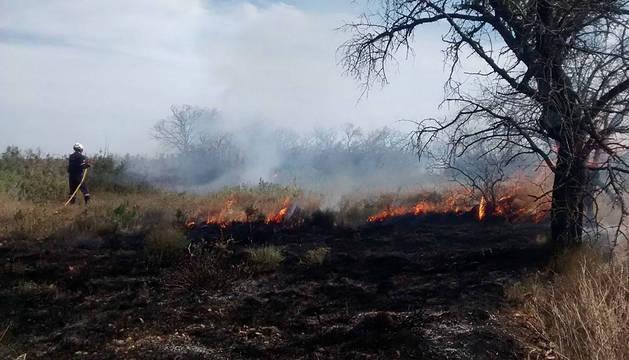 Incendio en Bargota.