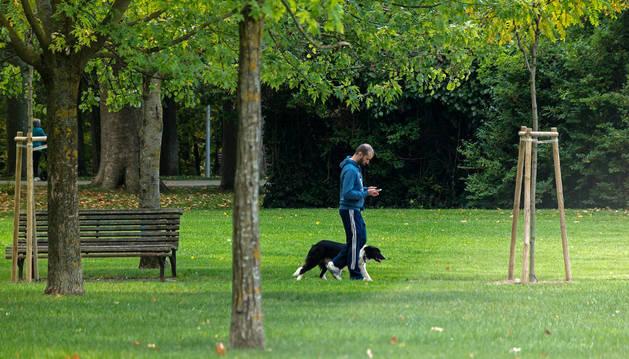 Una persona pasea a su perro en la principal zona verde de Estella, su parque de Los Llanos.