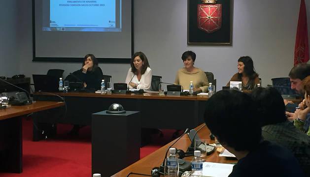 Amaya Áriz, este miércoles en la comisión de Salud del Parlamento.