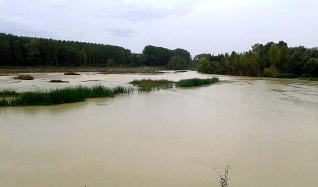 El río Aragón, a su paso por el municipio de Marcilla.