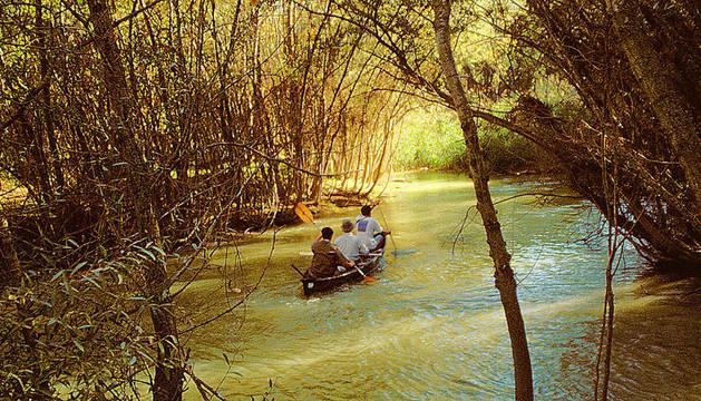 Una canoa en el río Aragón a su paso por el término de Marcilla.