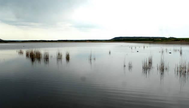 Laguna de Pitillas.