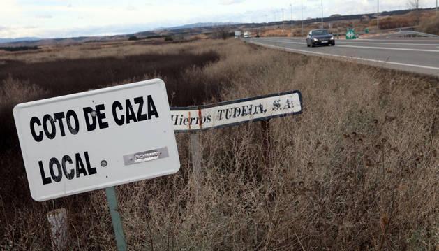 Zona del coto de caza de Tudela situada junto a la carretera de Corella.