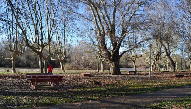 Parque del Ferial, a orillas del Ebro, que se proponen acondicionarlo y devolverlo a su estado original.