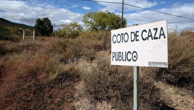 Imagen del coto de caza de Tudela en la zona de Montes de Cierzo.