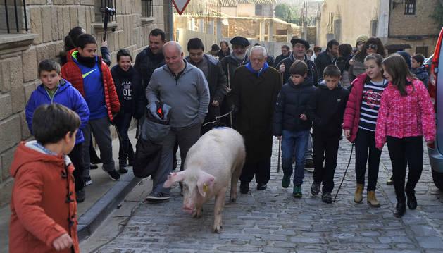 La cuta Chloé pasea por las calles de Artajona ante la mirada atenta de los niños de la localidad.