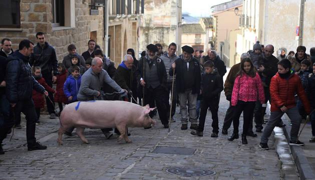 Vecinos de la localidad acompañan a la cuta 'Chloe' por las calles de Artajona.