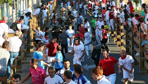 Imagen de uno de los encierros de las fiestas de Tudela del año pasado.