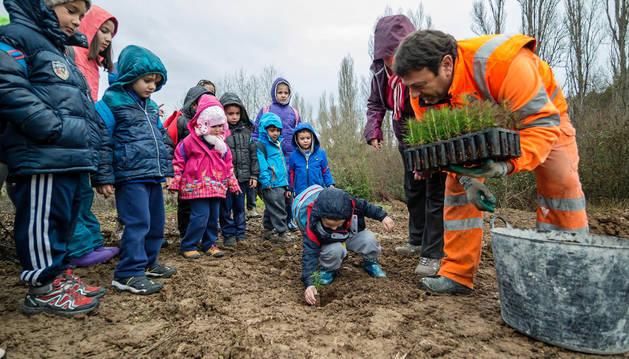 Los alumnos del colegio de Allo observan como uno de sus compañeros planta uno de los árboles.