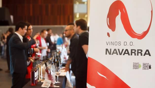 Cata de vinos D.O. Navarra
