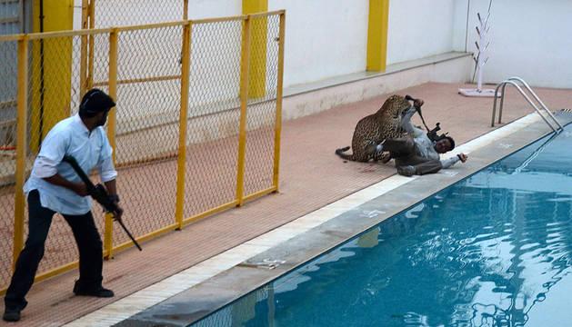 Un leopardo hiere a tres personas en una escuela india