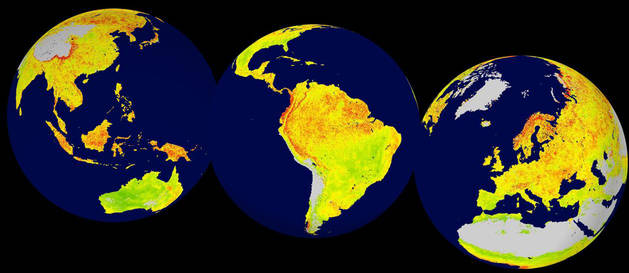 Las regiones ecológicamente más sensibles son la tundra ártica, partes del cinturón de bosque boreal y las selvas tropicales.