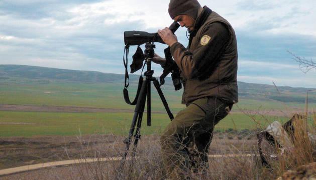 Personal del Guarderío Forestal censando avutardas.