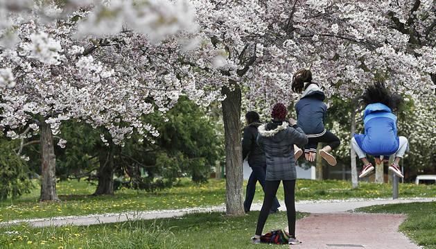 Semana primaveral con temperaturas suaves, viento sur y poca lluvia
