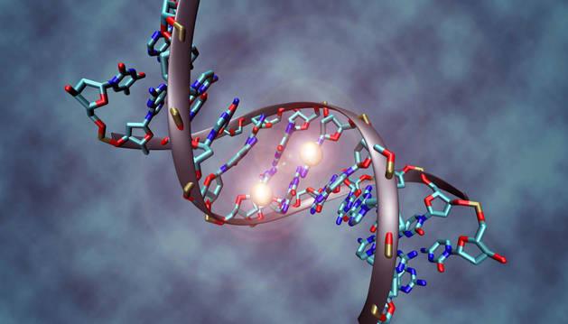 Doble hélice del ADN.