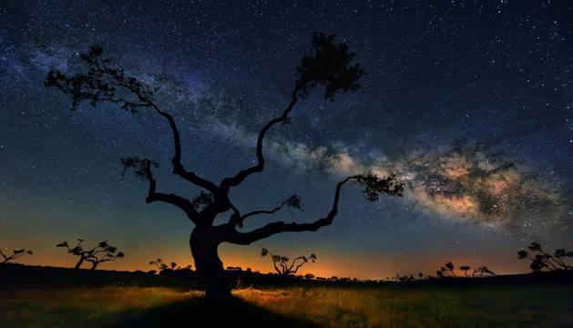Una galaxia desconocida aparece orbitando la Vía Láctea