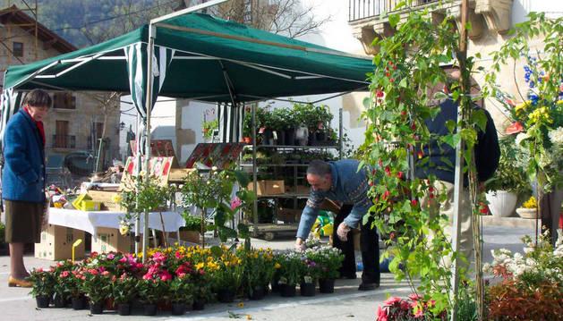 Feria de flores en Olazagutía