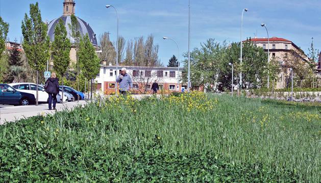 Bildu reconoce problemas con la contrata del parque de las Mujeres