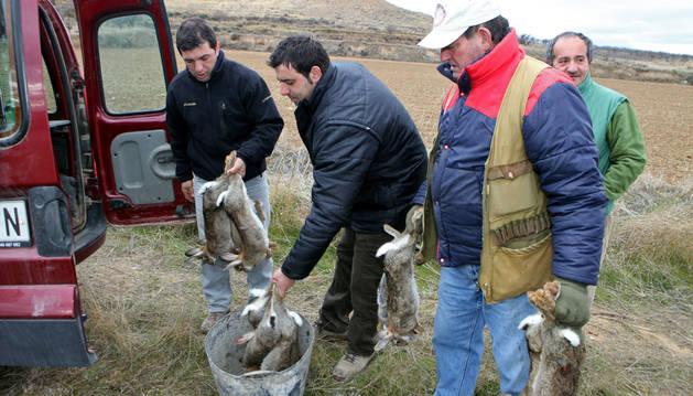Agricultores riberos con conejos cazados en sus campos.