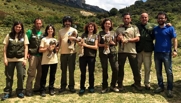 Liberados cinco nuevos pollos de águila de Bonelli en Lumbier