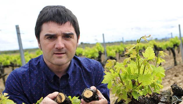 """""""Hay que pararse a pensar con qué intensidad explotamos las viñas"""""""