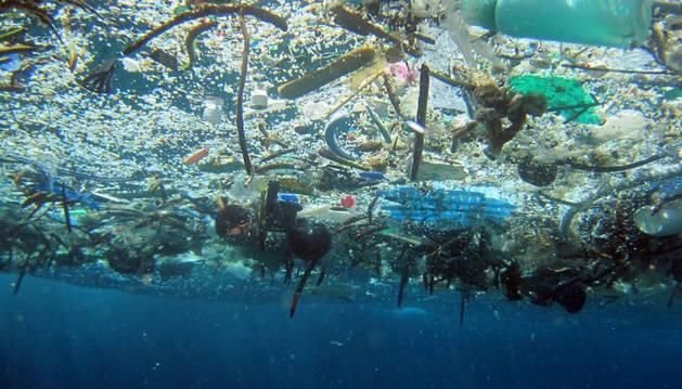 Los océanos, entre el plástico, la acidez y la sobrepesca