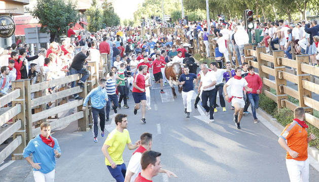 La manada pasa por la Avenida Zaragoza en el primer encierro de las fiestas de Tudela.