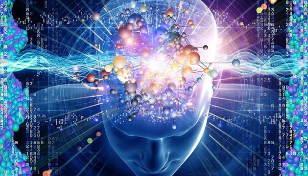 Nuevos colores, olores, sabores y las interacciones sociales potenciarían la neuroplasticidad de nuestro cerebro.