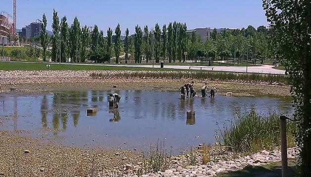 El Ayuntamiento vaciará el lago de Mendillorri para limpiarlo