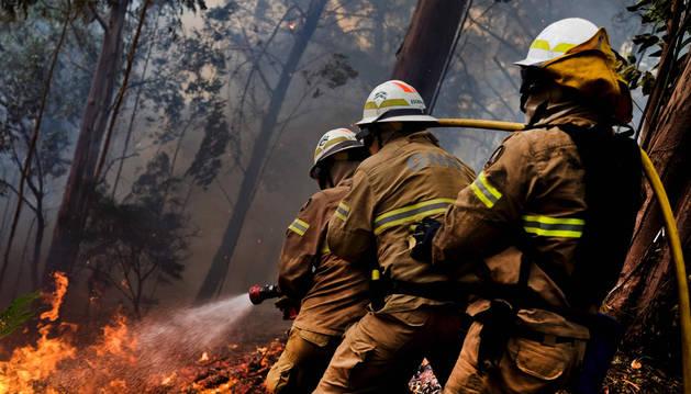 Varios bomberos, combatiendo uno de los incendios de Madeira.