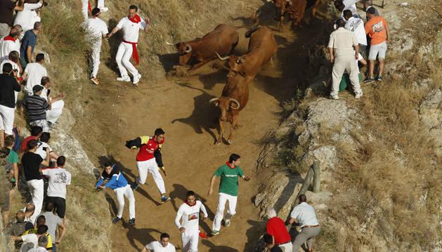 Un trasladado y dos vacas en la poza antes del tercer Pilón