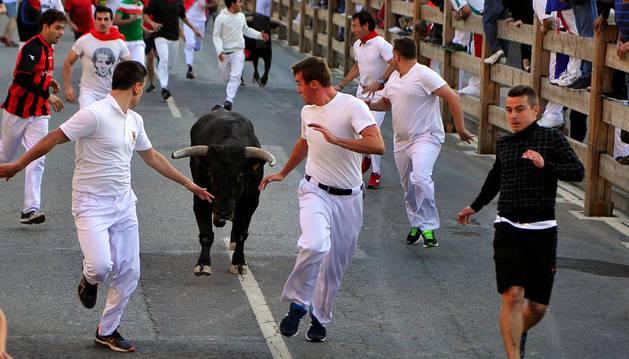 Un joven corre delante de los toros en el cuarto encierro de las fiestas de Tafalla.