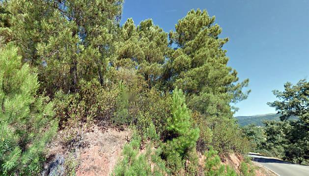 Controlado el incendio de Sierra de Gata tras arrasar 60 hectáreas